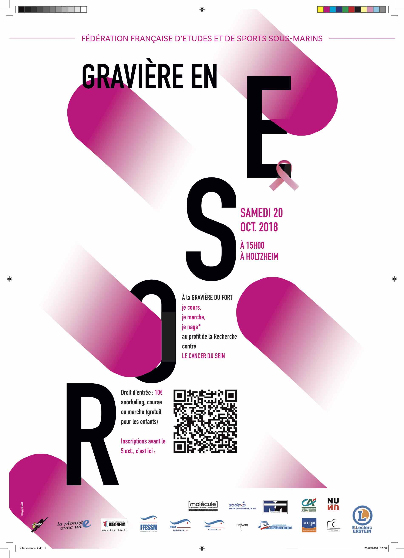 affiche GDF rose logos bas